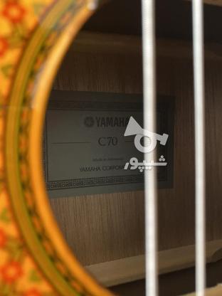 گیتار یاماها C70 اندونزی(آکبند) در گروه خرید و فروش ورزش فرهنگ فراغت در اصفهان در شیپور-عکس2