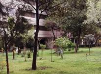 اجاره آپارتمان 135 متر در شهرک اکباتان در شیپور-عکس کوچک