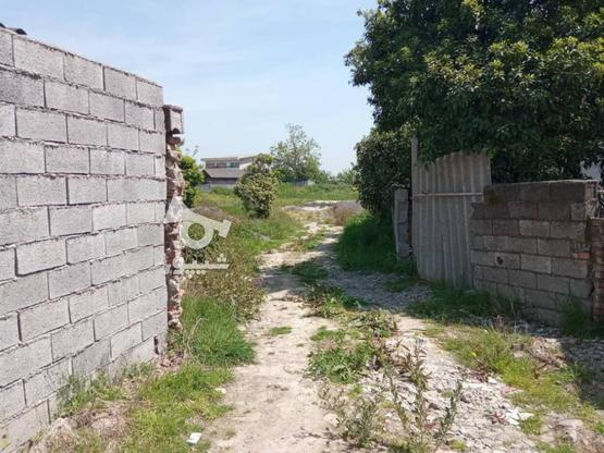 فروش زمین مسکونی 2000 متر در آمل در گروه خرید و فروش املاک در مازندران در شیپور-عکس3