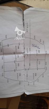 فروش زمین مسکونی 2000 متر در آمل در گروه خرید و فروش املاک در مازندران در شیپور-عکس2