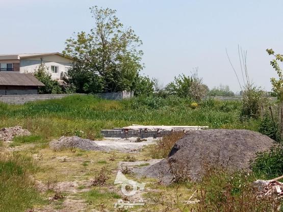 فروش زمین مسکونی 2000 متر در آمل در گروه خرید و فروش املاک در مازندران در شیپور-عکس8