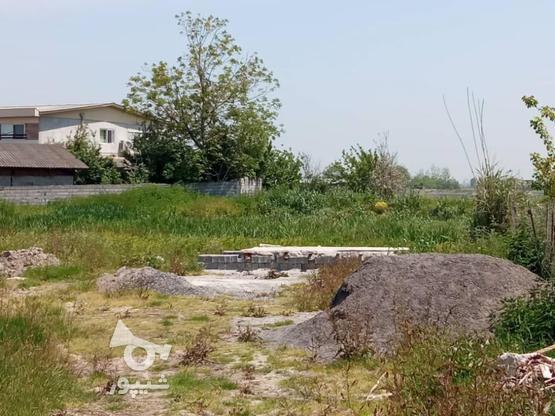 فروش زمین مسکونی 2000 متر در آمل در گروه خرید و فروش املاک در مازندران در شیپور-عکس6