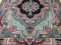فرش باغ گل شیپور/گرشاسب در شیپور-عکس کوچک
