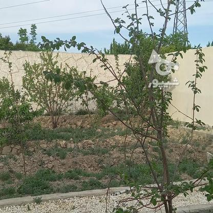 504متر باغ چهاردیواری شهرکی در گروه خرید و فروش املاک در تهران در شیپور-عکس3