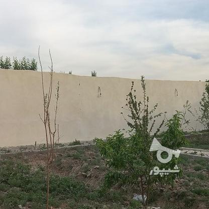 504متر باغ چهاردیواری شهرکی در گروه خرید و فروش املاک در تهران در شیپور-عکس5