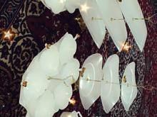 ظروف ملامینه در شیپور