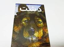 کتاب رمان دشت در شیپور-عکس کوچک