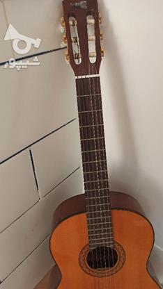 گیتار c70 نو در گروه خرید و فروش ورزش فرهنگ فراغت در اصفهان در شیپور-عکس2