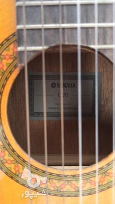 گیتار c70 نو در گروه خرید و فروش ورزش فرهنگ فراغت در اصفهان در شیپور-عکس3
