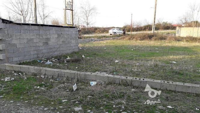 فروش زمین مسکونی 560 متر در کیاشهر در گروه خرید و فروش املاک در گیلان در شیپور-عکس1