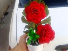 گل رز مخمل مصنوعی  در شیپور