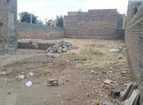 زمین کلنگی  در شیپور-عکس کوچک