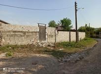 فروش زمین بافت مسکونی 150 متری قادیکلا در شیپور-عکس کوچک