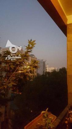 210متر/تک واحد/مشاعات آبی در گروه خرید و فروش املاک در تهران در شیپور-عکس3
