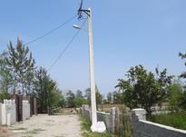 فروش زمین مسکونی 963 متری محدوده نمک آبرود امام رود در شیپور-عکس کوچک