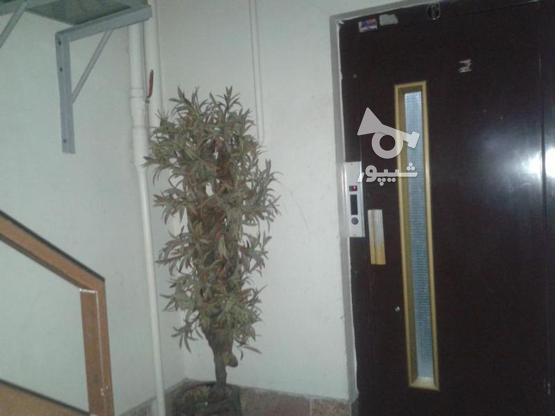 اجاره آپارتمان 75 متر در گلشهر در گروه خرید و فروش املاک در البرز در شیپور-عکس4