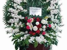 انجمن خیریه حضرت حجت عج در شیپور