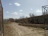 باغ با کاربری کشاورزی صنعتی  در شیپور-عکس کوچک