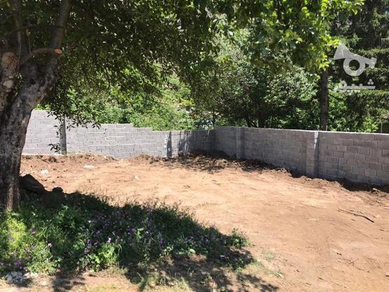 135 متر زمین مسکونی جواهرده در گروه خرید و فروش املاک در مازندران در شیپور-عکس1