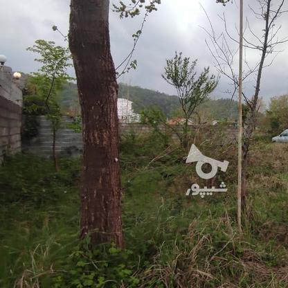 107 متر زمین مسکونی در لاهیجان   در گروه خرید و فروش املاک در گیلان در شیپور-عکس3