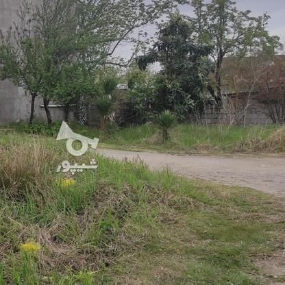 107 متر زمین مسکونی در لاهیجان   در گروه خرید و فروش املاک در گیلان در شیپور-عکس5