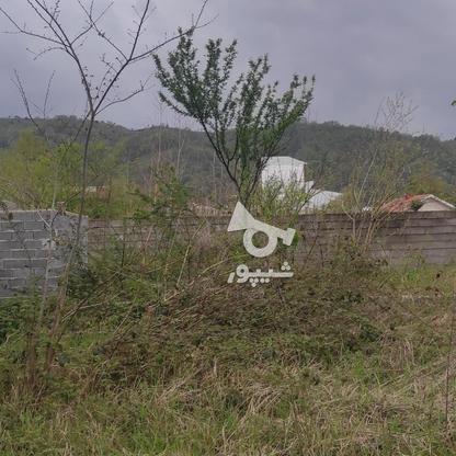 107 متر زمین مسکونی در لاهیجان   در گروه خرید و فروش املاک در گیلان در شیپور-عکس6