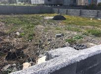 زمین 500 متری در  گلستانهای ایزدشهر سند تکبرگ در شیپور-عکس کوچک
