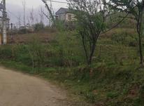 800 متر زمین مسکونی با ویوی عالی در لاهیجان در شیپور-عکس کوچک