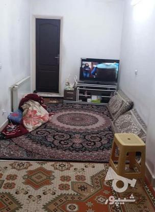فروش آپارتمان 36 متر در سلسبیل در گروه خرید و فروش املاک در تهران در شیپور-عکس7