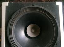 میدرنج 12 اینچ در شیپور-عکس کوچک