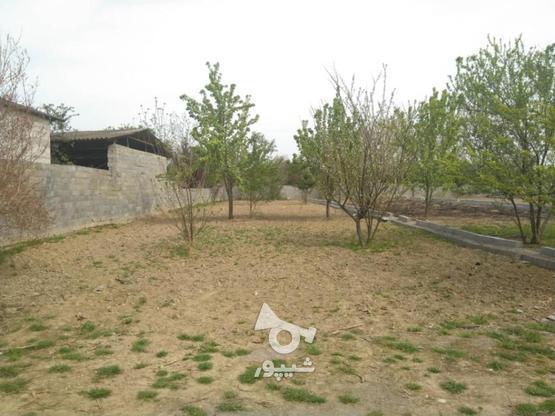 زمین 243متری مسکونی پشت بیمارستان شفا بابلسر در گروه خرید و فروش املاک در مازندران در شیپور-عکس1