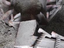 پره ناخنی فرگوسن در شیپور