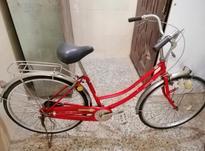 فروش دوچرخه های ژاپنی کلاسیک  در شیپور-عکس کوچک