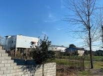 فروش زمین تجاری آمل کلوده514متر 14متر بحر  در شیپور-عکس کوچک