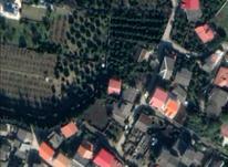 فروش زمین مسکونی 200 متر در نوشهر-علی آبادمیر در شیپور-عکس کوچک