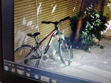 دوچرخه پوما دزدیده شده/گم شده در شیپور