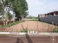 زمین ویلایی مسکونی در شیپور-عکس کوچک