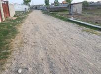 فروش زمین مسکونی 500 متر در بابل در شیپور-عکس کوچک