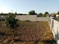 فروش زمین باغی 1740 متری در زیلت در شیپور-عکس کوچک