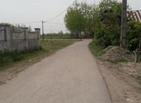 فروش زمین مسکونی شهری در شیپور-عکس کوچک