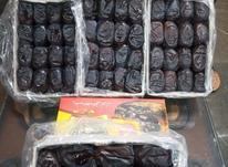 انواع خرمای مضافتی بم با بهترین کیفیت در شیپور-عکس کوچک