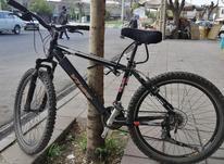 دوچرخه ویوا مدل team در شیپور-عکس کوچک