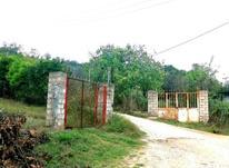 فروش زمین 1100 متر در وارد محله در شیپور-عکس کوچک