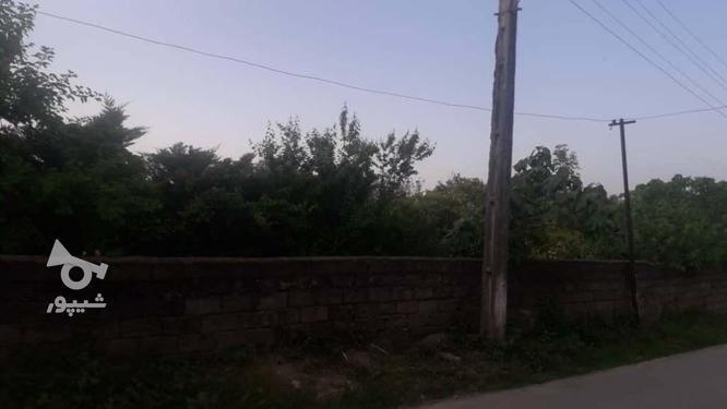 زمین داخل بافت مسکونی 2123 متر در چالوس در گروه خرید و فروش املاک در مازندران در شیپور-عکس1