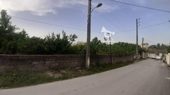 زمین داخل بافت مسکونی 2123 متر در چالوس در گروه خرید و فروش املاک در مازندران در شیپور-عکس2