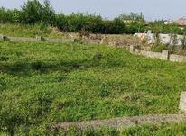 1550 متر زمین خوش قیمت در شیپور-عکس کوچک
