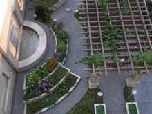 طراتحی تخصصی فضای سبز در شیپور
