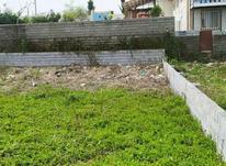 فروش زمین 250متری ساحلی  در شیپور-عکس کوچک