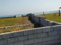 فروش زمین ساحلی 600متر بر 1دریا  در شیپور-عکس کوچک
