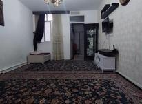 50 متر برترین در منطقه(قصرالدشت ، مرتضوی) در شیپور-عکس کوچک
